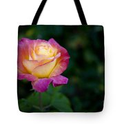 Garden Tea Rose Tote Bag