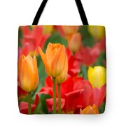 Garden Torches Tote Bag
