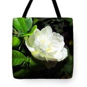 Gardenia 2013 Tote Bag