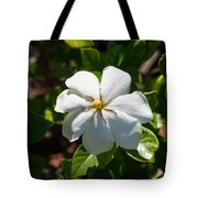 Gardinia At Twilight 1 Tote Bag