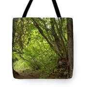 Garibaldi Old Growth Cedars Tote Bag