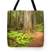 Garibaldi Wilderness Rainforest Tote Bag