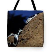 Garter Snake Genus Elapsoidea Tote Bag