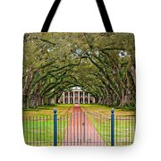 Gateway To The Old South Tote Bag by Steve Harrington