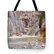 Gateway To The Zion Narrows Tote Bag