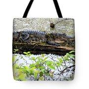 Gator Camoflage Tote Bag