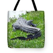 Gator In The Grass Tote Bag