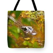 Gator On The Move Tote Bag