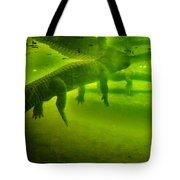 Gator Reflection Tote Bag