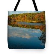 Gay City Pond Tote Bag
