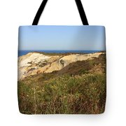 Gay Head Lighthouse With Aquinnah Beach Cliffs Tote Bag