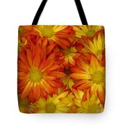 Gazania Painterly Tote Bag