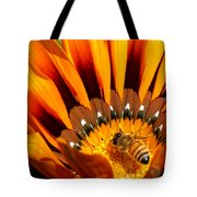 Gazania Pollination Tote Bag