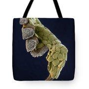 Gecko Foot Sem Tote Bag