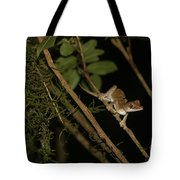 Gecko In The Night Tote Bag
