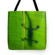 Gecko Silhouette Tote Bag