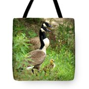 Geese And Gosling Tote Bag