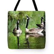 Geese And Green Tote Bag