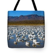 Geese At Bosque Del Apache Tote Bag by Kurt Van Wagner