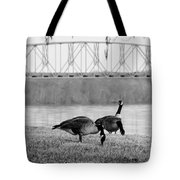 Geese By The Ohio Tote Bag