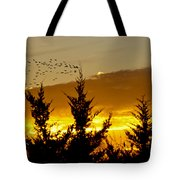Geese In Golden Sunset Tote Bag