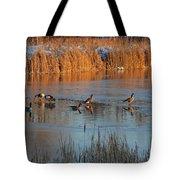 Geese In Wetlands Tote Bag