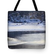 Geese On Ice Tote Bag