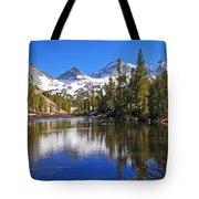 Gem Of The Sierras Tote Bag