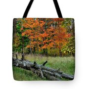 Generations Past And Present Tote Bag