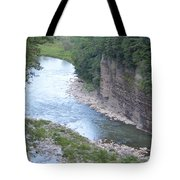 Genesee River In Grand Canyon Of East Tote Bag