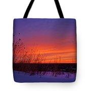 Genesis Dawn Tote Bag