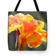 Gentle Awakening Tote Bag