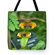 Gentle Butterfly Courtship 01 Tote Bag