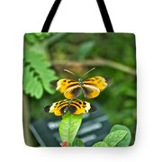Gentle Butterfly Courtship 02 Tote Bag