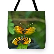 Gentle Butterfly Courtship 03 Tote Bag