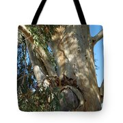Gentle Calypso Three In Cantoria Village Spain  Tote Bag