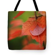 Gentle Catch Tote Bag