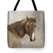 Gentle Devotion Tote Bag