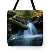 Gentle Little Falls Tote Bag