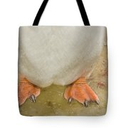 Gentoo Penguin Feet Tote Bag
