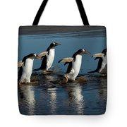 Gentoo Penguins Walking Tote Bag by Hiroya Minakuchi