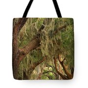 Georgia Golden Oaks Tote Bag