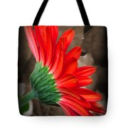 Gerber Daisy Bashful Red Tote Bag