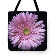 Gerber Daisy Flower Tote Bag