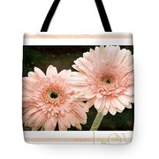 Gerber Daisy Love 5 Tote Bag