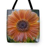 Gerbera Daisy Covered In Frost Tote Bag