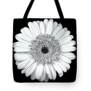 Gerbera Daisy Monochrome Tote Bag