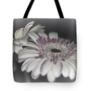 Gerbera Dream 1 Tote Bag