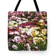 Gerbera Flowers Tote Bag