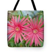 Gerbera Jamesonii / Pink Daisy Flowers Tote Bag
